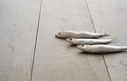 Drie sardines op houten lijst Stock Fotografie
