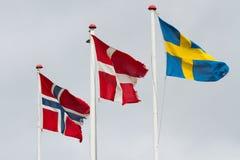 Drie scandidavian vlaggen in de wind tegen de hemel stock foto