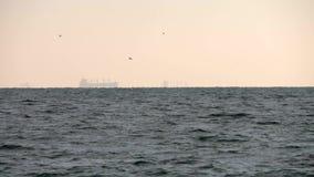 Drie schepen op horizon tijdens zonsondergang Vaag silhouet met vliegende vogels stock videobeelden