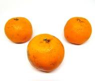 Drie sinaasappelen Stock Afbeelding