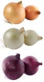 Drie soorten uien Royalty-vrije Stock Foto's