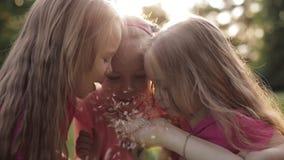 Drie speelse meisjes die op bloembloemblaadjes blazen op de hand van de volwassene stock videobeelden