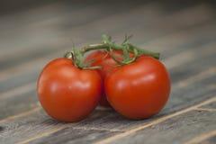 Drie tomaten Royalty-vrije Stock Foto's
