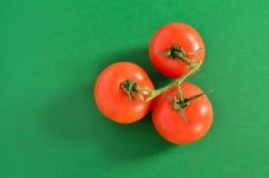 Drie Tomaten op Wijnstok, die op Groen wordt geïsoleerdc Royalty-vrije Stock Foto's