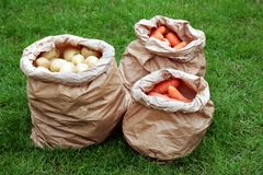Drie traditionele rustieke pakpapierzakken die organische aardappels en wortelen, op een grasgebied bevatten Stock Fotografie
