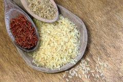 Drie types van rijst Stock Foto's
