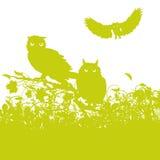 Drie uilen royalty-vrije illustratie