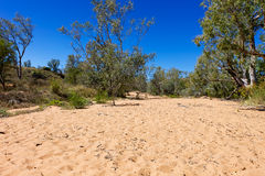 Drie up creek in outback Australia. Stock Photo