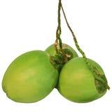 Drie van groene kokosnoten die op wit worden geïsoleerdd Stock Afbeeldingen