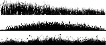 Drie varianten van zwart gras Stock Foto's