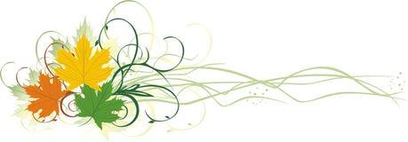 Drie varicolored esdoornbladeren. Banner Stock Foto's