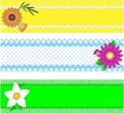Drie VectorGrenzen met Bloemen en de Ruimte van het Exemplaar Stock Fotografie
