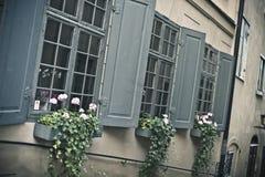 Drie vensters Royalty-vrije Stock Fotografie