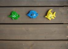 Drie verschillende stuk speelgoed vissen van groene, blauwe en gele kleuren op de houten vloer van een houten buitenhuis Horizont stock foto