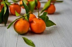 Drie verse mandarijnen met groene bladeren op de grijze houten vrije raad kopiëren ruimte Sappige oranje gele mandarins en mandar Stock Foto