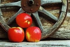Drie verse rode appelen tegen een houten achtergrond Stock Foto's