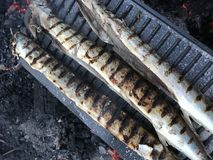 Drie vissen bij de grill - het openlucht koken stock foto's
