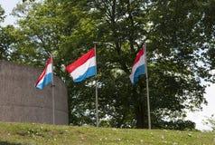 Drie vlaggen van Luxemburg het vliegen Royalty-vrije Stock Afbeelding