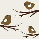 Drie vogels Stock Afbeelding