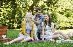 Drie vrienden tijdens de picknick Stock Foto