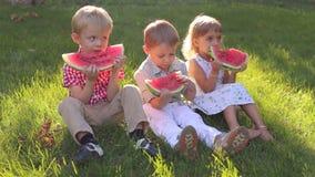 Drie vrolijke gelukkige jonge geitjes eten watermeloen in de zomer in het park stock footage