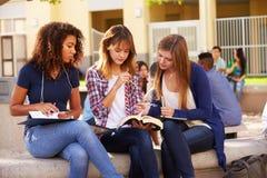 Drie Vrouwelijke Middelbare schoolstudenten die aan Campus werken Royalty-vrije Stock Afbeeldingen