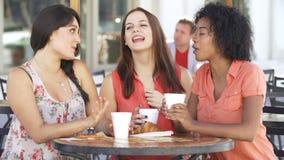 Drie Vrouwelijke Vrienden die in Cafï ¿ ½ samenkomen stock video