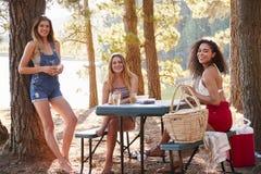 Drie vrouwelijke vrienden die uit door een meer hangen die aan camera glimlachen royalty-vrije stock foto