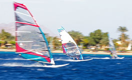 Drie windsurfers in motie stock foto's