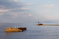 Drie zeemeeuwen en drie vissers op de overzeese achtergrond stock foto's