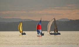 Drie Zeilboten die aan de afwerkingslijn rennen op Puget Sound Royalty-vrije Stock Fotografie