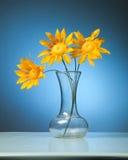 Drie Zonnebloemen Stock Afbeeldingen