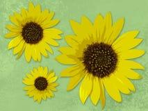 Drie zonnebloemen Royalty-vrije Stock Afbeelding