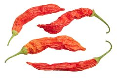 Dried Aji Wundertute peppers C baccatum, top, paths. Dried Aji Wundertute peppers Capsicum baccatum. Top view, clipping paths Stock Photography