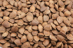 Dried almond Royalty Free Stock Photography