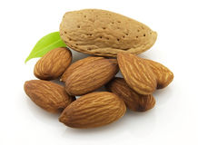 Dried almonds Stock Photography