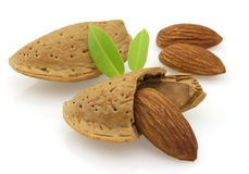 Dried almonds Stock Photos