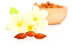 Dried almonds with  flowers Royalty Free Stock Image