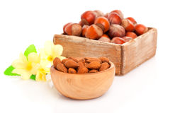 Dried almonds with flowers Royalty Free Stock Images