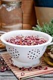 Dried Anasazi beans Royalty Free Stock Photography