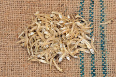 Dried Anchovies Royalty Free Stock Photo