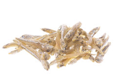 Dried Anchovies Macro Isolated Stock Images