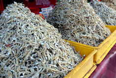 Dried anchovies on sale at flea market in Malaysia Royalty Free Stock Image