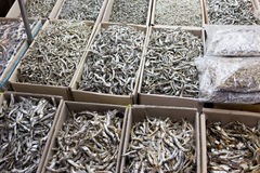 Dried anchovy fish Royalty Free Stock Images