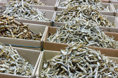 Dried anchovy fish for sell Stock Photos