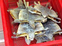Dried animals lying in a red box on a street market in Hong Kong Stock Photography