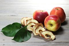 Dried apple rings Royalty Free Stock Photo