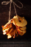 Dried apple slices Stock Images