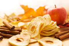 Dried apples and cinnamon Stock Photos