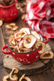 Dried apples Stock Photos